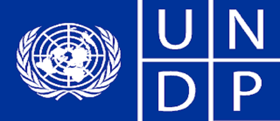 Nigeria: Japan Donates $2.5m to Support 'Early Recovery and Community Stabilisation' Project in Northeast -UNDP