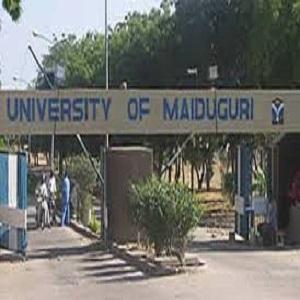 Nigeria: Senate Stops University of Maiduguri From Increasing Tuition Fees