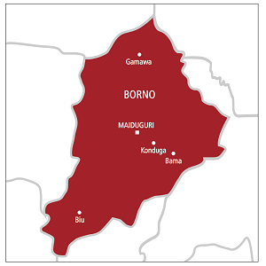 Borno State Government Discovers That 75 To 80 Percent Of Lands In Maiduguri Are Without Certificate Of Occupancy